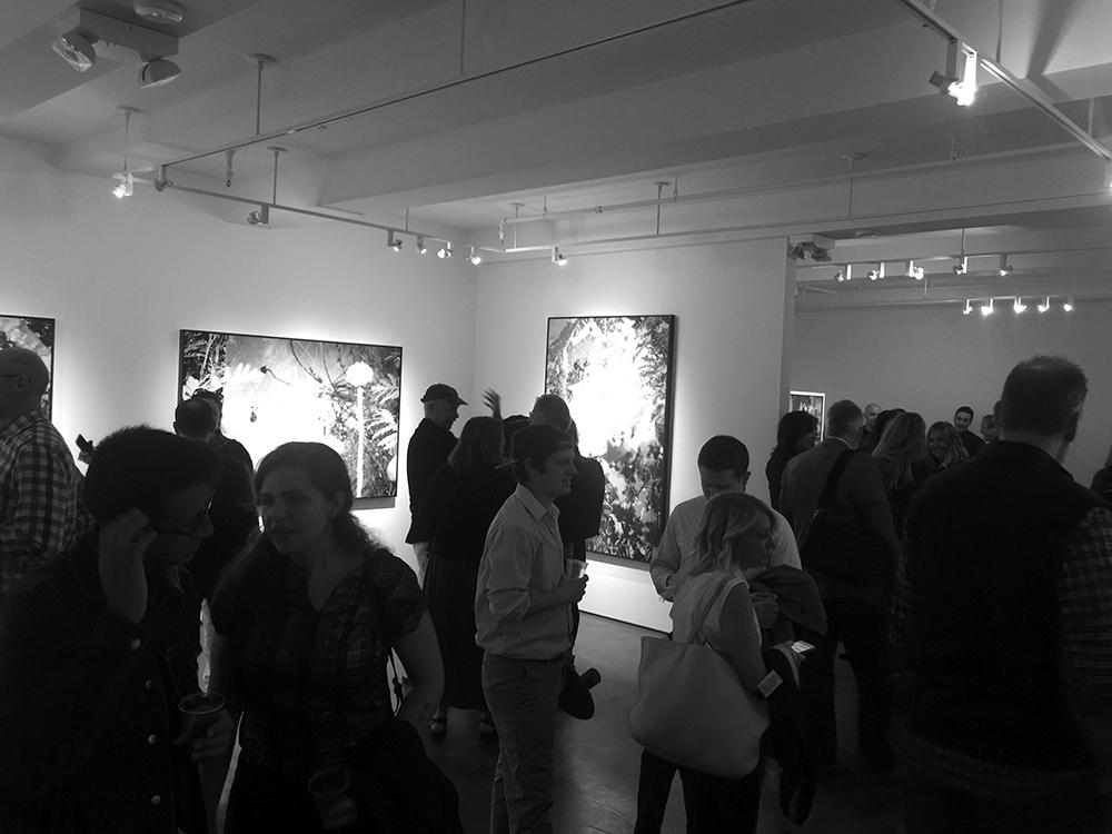 crushfanzine-Karine Laval-Benrubi Gallery 2